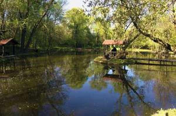 Рыбацкая деревня - платная рыбалка в Москве