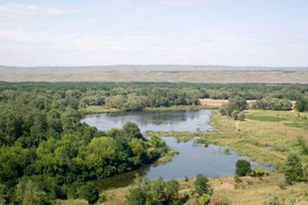 Рыбные места в краснодарском крае