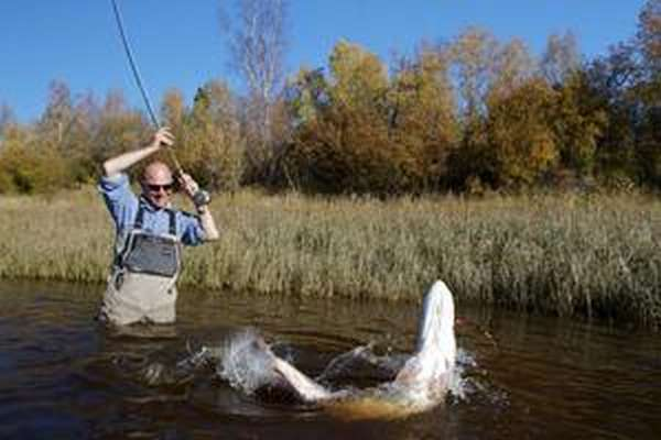 Лучшее время для рыбалки