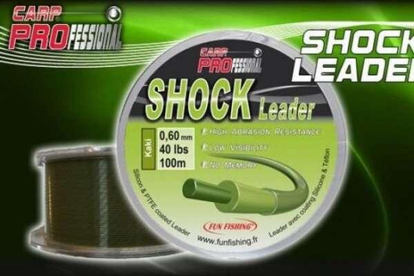 шок-лидер