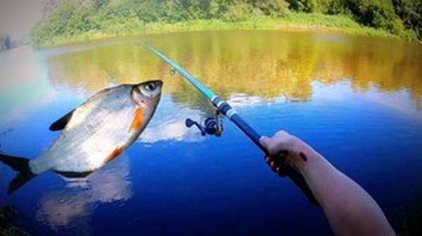 Способы рыбалки