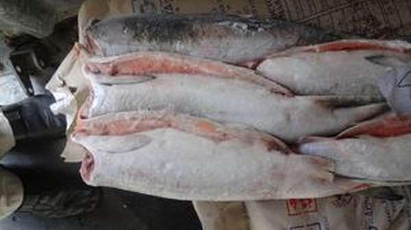 Как готовится рыба кета
