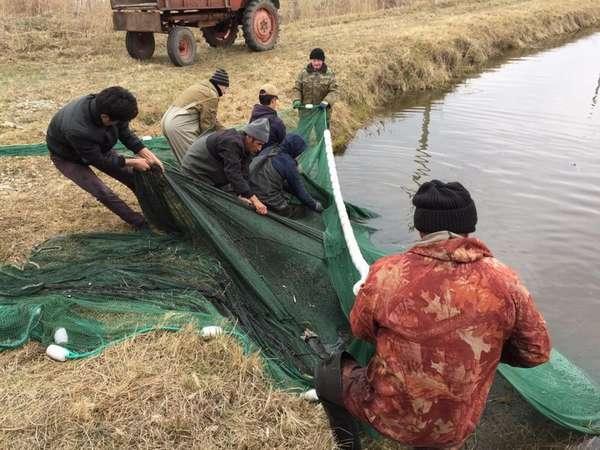 Какую рыбу можно поймать в прудах Гжельского рыбного хозяйства