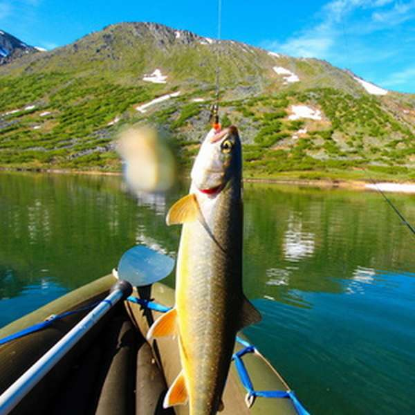 Как рыбачить с применением фишмагнита