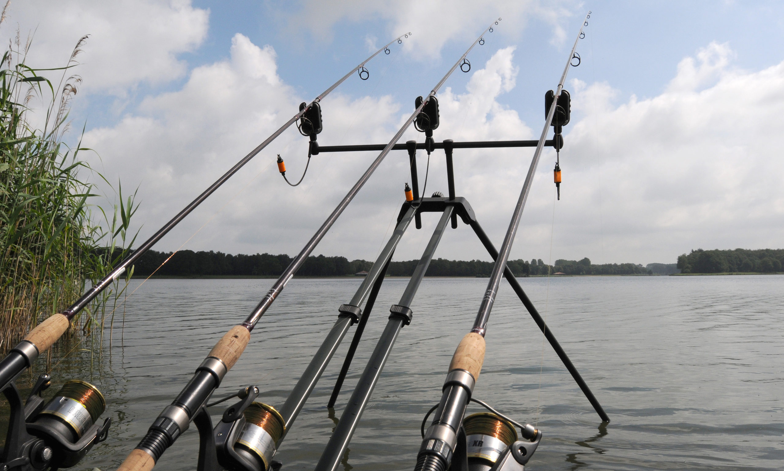 Рыбалка на быстрине. Особенности выбора орудий лова и привады